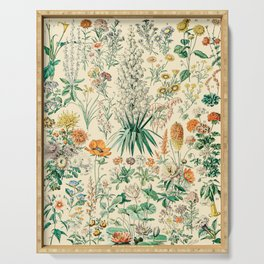 Floral Diagram // Fleurs IV by Adolphe Millot XL 19th Century French Science Textbook Artwork Serving Tray