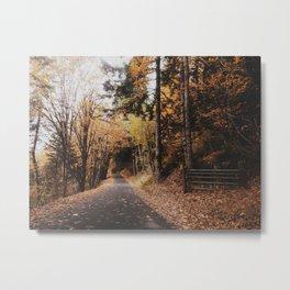 Mill Creek Metal Print