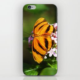 Banded Orange Butterfly iPhone Skin