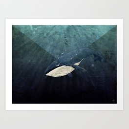 Everett's Whale Art Print