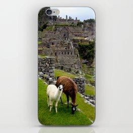 The Inhabitants of Machu Picchu iPhone Skin