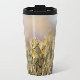 Winter Boxwood  Travel Mug