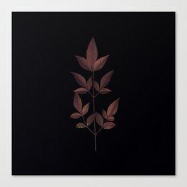 Herbarium 1 Canvas Print