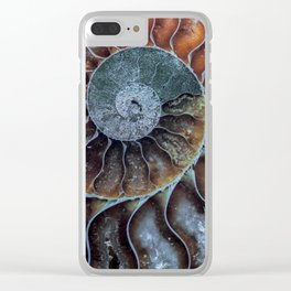 Spiral Ammonite Fossil Clear iPhone Case