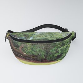 Oak Limbs On The Ground Fanny Pack