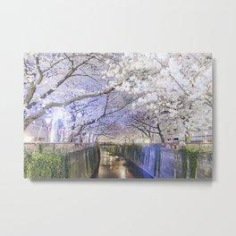 Nakamegruo Sakura Metal Print