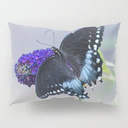 Butterfly Blues Pillow Sham