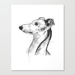 Italian Greyhound Sketch Canvas Print