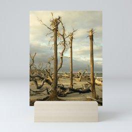 Three Upright Trees on Driftwood Beach Mini Art Print