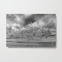 scattered trees Metal Print