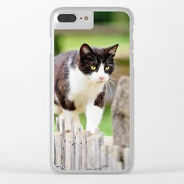 The Cat That Walked By Himself Clear iPhone Case