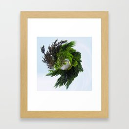 Tiny Planet Powell Gardens Waterfall Framed Art Print