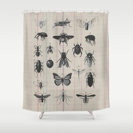Vintage Insect Study on antique 1800's Ledger paper print Shower Curtain
