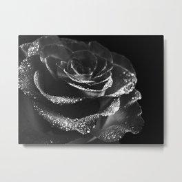 Rose Brilliant Metal Print