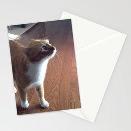delicately soft. Stationery Cards