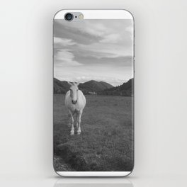 Happy White Horses - Black and White - Sun Valley, Idaho iPhone Skin