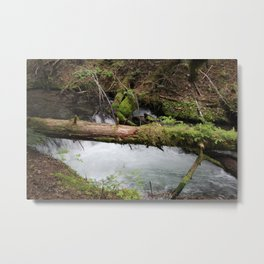 log water Metal Print