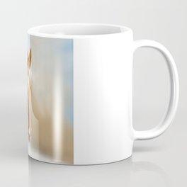Brown Horse Winter Sky Coffee Mug