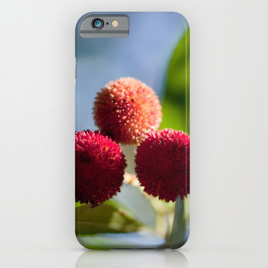 Strawberry tree fruits 8697 iPhone & iPod Case