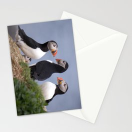 A Contemplation of Puffins Stationery Cards