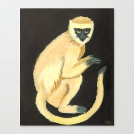 A Monkey Canvas Print