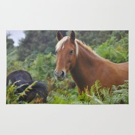 Wild Palomino Flaxen-maned New Forest Horse Rug