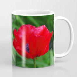 Red oriental poppy flower Coffee Mug