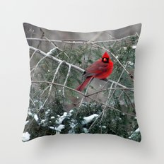 Winter Cardinal Throw Pillow