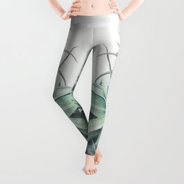 Air Plant Collection Leggings