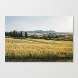 Hillside Canvas Print