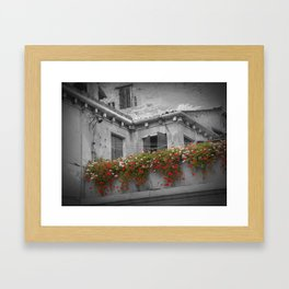 Colorful Garden Framed Art Print