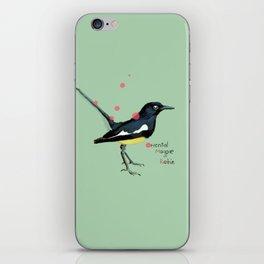Oriental Magpie Robin iPhone Skin