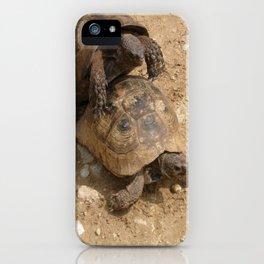 Slow Love - Tortoises iPhone Case