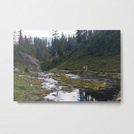 Hiking Metal Print