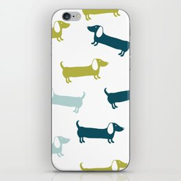 Lovely dachshunds in great colors iPhone Skin