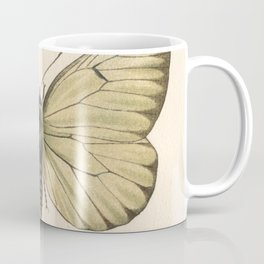 Antique Pale Green Butterfly Lithograph Coffee Mug
