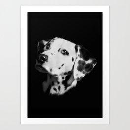 Dalmation Art Print
