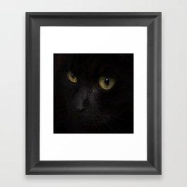Black cat with yellow eyes Framed Art Print