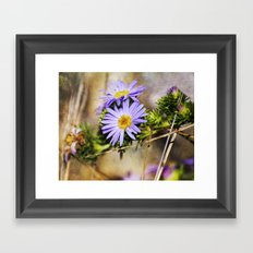 Forest Purples Framed Art Print