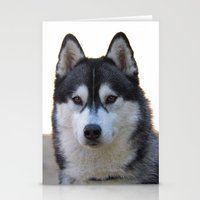 husky Stationery Cards featuring Husky by Doug McRae