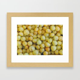 A Pile of Yellow Plums Framed Art Print