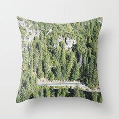 nature meets highway Throw Pillow