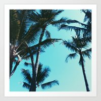 palm trees Art Prints featuring Palm Trees by Alexandra Str