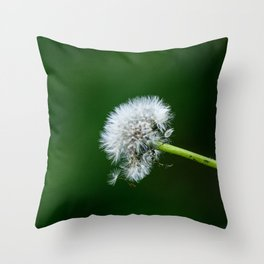 Sweet & Dandy Throw Pillow