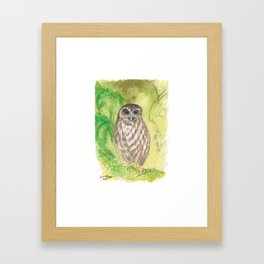 Morepork Framed Art Print