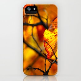 Beautiful orange linden tree leaves iPhone Case