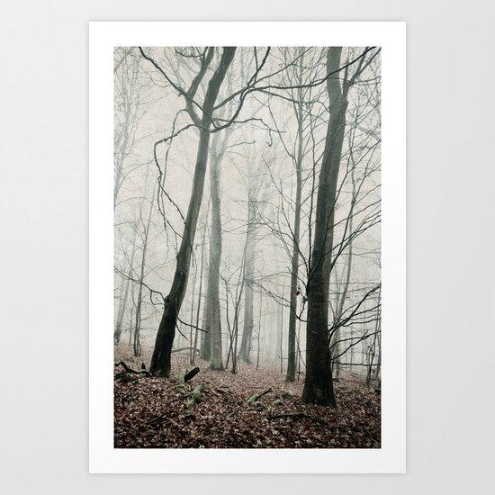 bare trees in fog Art Print
