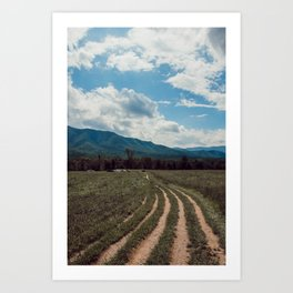 The fields of Tennessee Art Print
