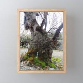 Platanos Framed Mini Art Print