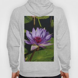 Purple Beauty Hoody